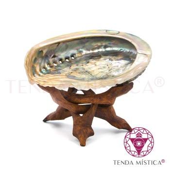 Concha de Abalone